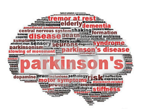 Treatment Of Parkinson's Disease and Multiple Sclerosis With Fascial Stretch Therapy